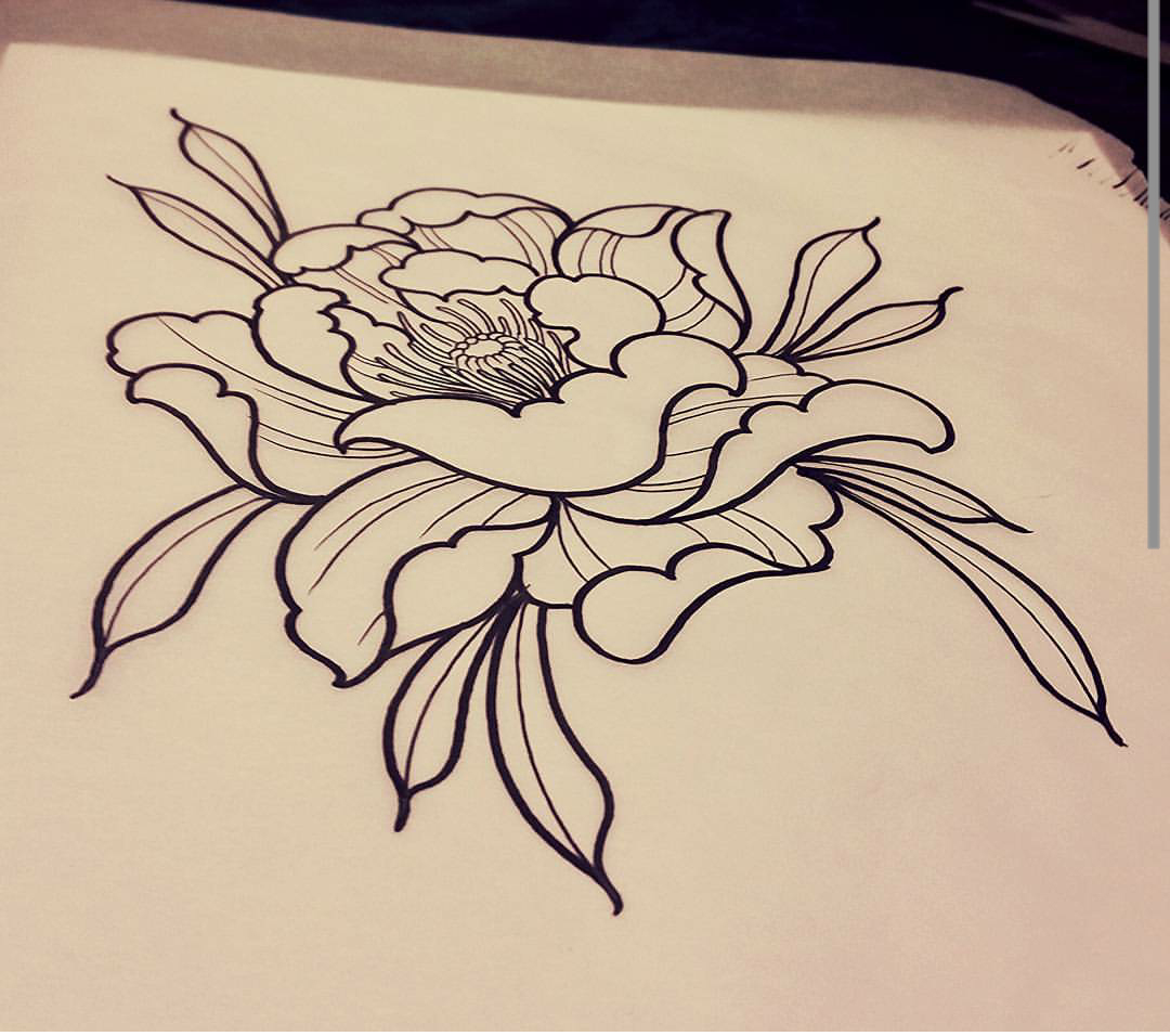 Peony Sketch Bob Kerr Tattoos